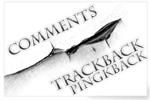 Показываем trackback/pingbacks отдельно