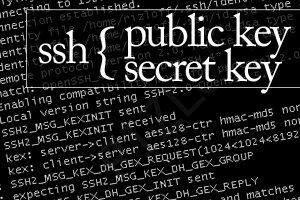 ssh without password